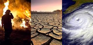 विकसित देशों के समक्ष जलवायु से जुड़ी समस्याए साझा करेंगे बेसिक देश