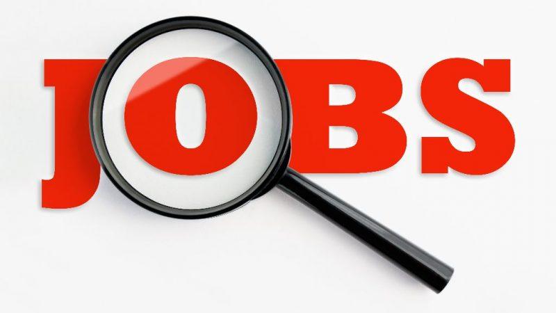 अपेक्स बैंक एवं जिला केन्द्रीय सहकारी बैंकों में 715 पदों पर भर्ती की प्रक्रिया शुरू