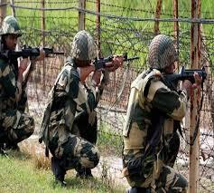 BSF ने मार गिराया पाक घुसपैठिया