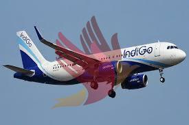 10 दिन में तीसरी बार विमान में तकनीकी खराबी, दिल्ली एयरपोर्ट पर उतारना पड़ा Indigo का प्लेन