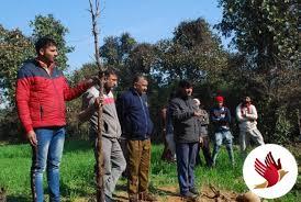 जंगल में बारहसिंगा का क्षतविक्षत शव बरामद